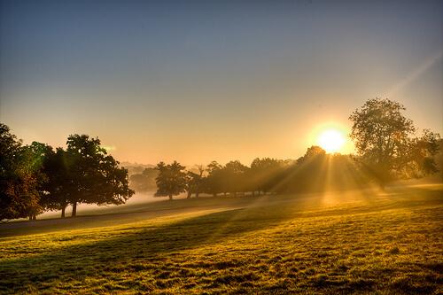 Windsor Great Park Sunrise by Matt Peters Photography