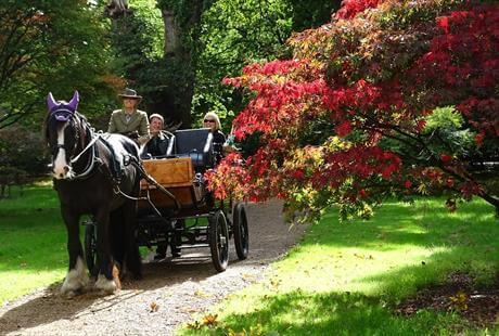 horse drawn carriage Virgina Water Lake