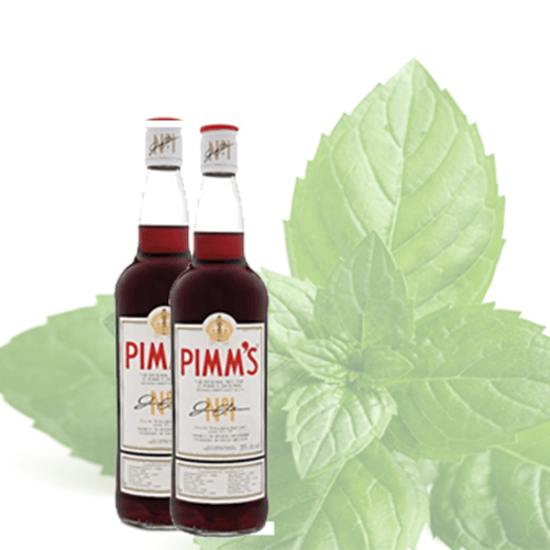 Promotion - Relax and enjoy Summer in Windsor with a Bottle of Pimms on us!