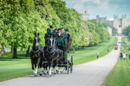 The Royal Windsor Horse Show's biggest year yet